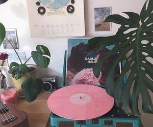 aesthetic, music, and plants image