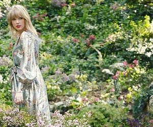 lover and Taylor Swift image