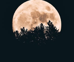 background, black, and moon image