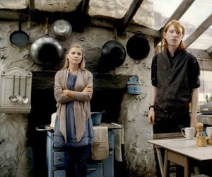 harry potter and fleur delacour image
