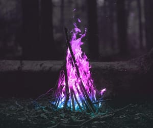 fire, forest, and nature image