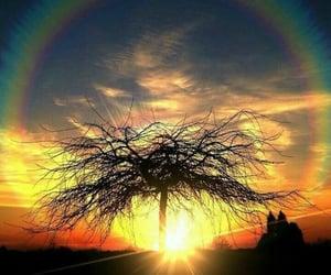 arcoiris, belleza, and luz image