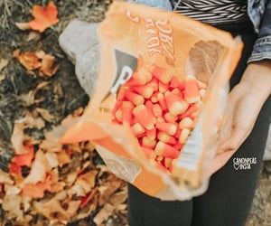 autumn, candy, and fall image