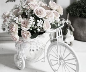 flowers, pink aesthetic, and roses image