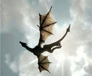 book, fantasy, and dragon image