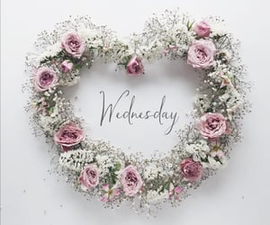 flowers, wednesday, and happy day image