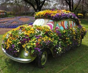 beautiful, flowers, and hippies image