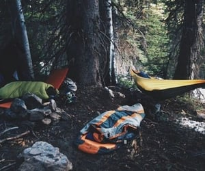camping, forest, and tree image