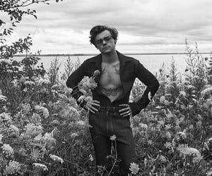 Harry Styles, rolling stone, and boyfriend harry image