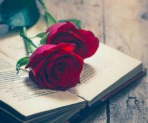 beautiful, book, and nice image