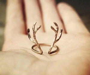 deer, golden, and stag image