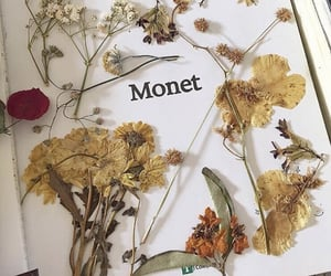 flowers, monet, and aesthetic image
