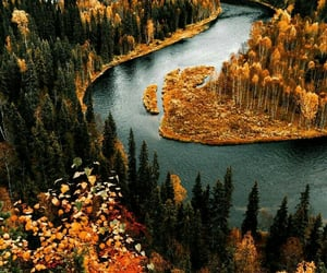 autumn, nature, and landscape image