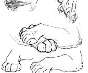 cat, cat paw, and drawing reference image
