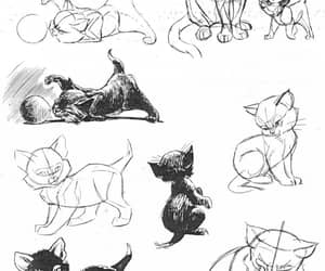 cat, drawing reference, and ken hultgren image