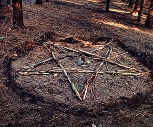 pentagram, wicca, and forest image