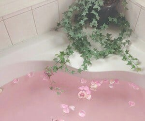 pink, water, and bath image