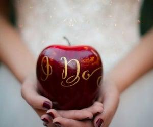 apple, disney, and white image