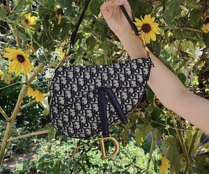 accessory, dior, and dior bag image