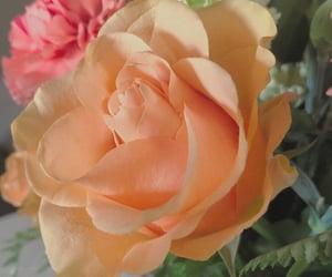 aesthetic, vsco edit, and flower aesthetic image