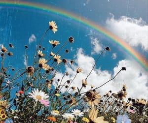 flowers, rainbow, and aesthetic image