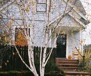 house, autumn, and tree image