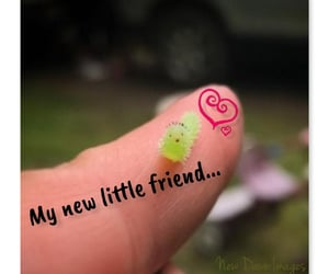 friend, new friend, and cute image