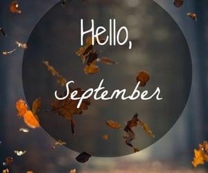 seasons, autumn, and fall image