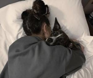 ariana grande, dog, and myron image