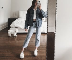 dog, mirror, and sneakers image