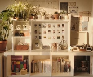 books, home, and plants image