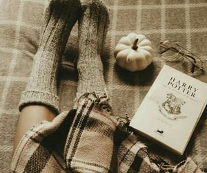 book, fall, and harry potter image
