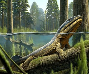 cool, prehistoric, and pretty image