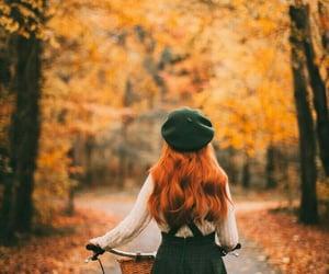 autumn, bike, and fall image