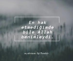 tumblr, alıntı, and mydream-16 image