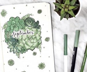 September, green, and journal image