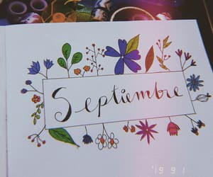 flowers, bujo, and notebook image