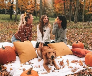 fall, friends, and autumn image
