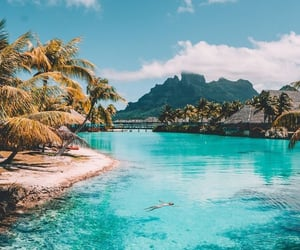 beach, theme, and tropical image