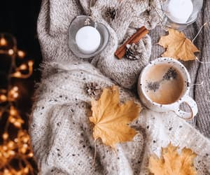leaves, candle, and cozy image
