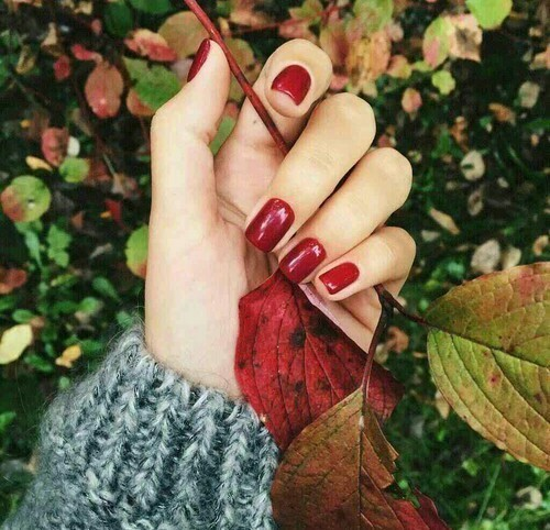 article, trendy, and autumn image