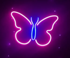 butterfly, interior design, and lights image