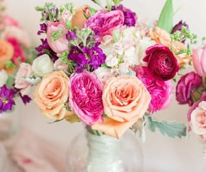colors, flowers, and home image