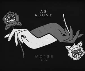 dark, rose, and witch image
