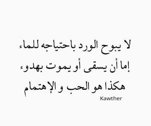 arab, حُبْ, and موتً image