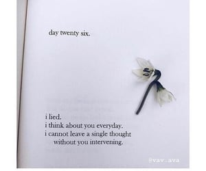 everyday, flower, and page image