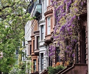 architecture, beautiful, and brownstone image