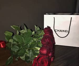 aesthetic, red roses, and luxury image