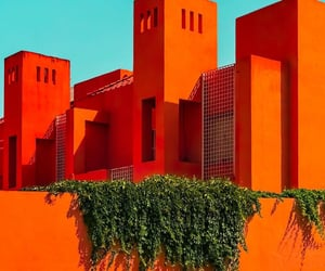 architecture and orange image