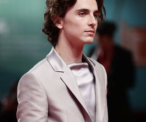 timothee chalamet, beautiful boy, and handsome image